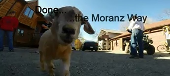 Done the Moranz Way - Moranz Family Video by Roy Moranz