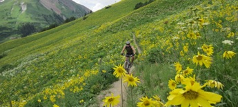 Roy Moranz mountain biking 401 Trail, Crested Butte Colorado