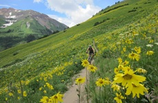 Picture of Roy in Crested Butte.